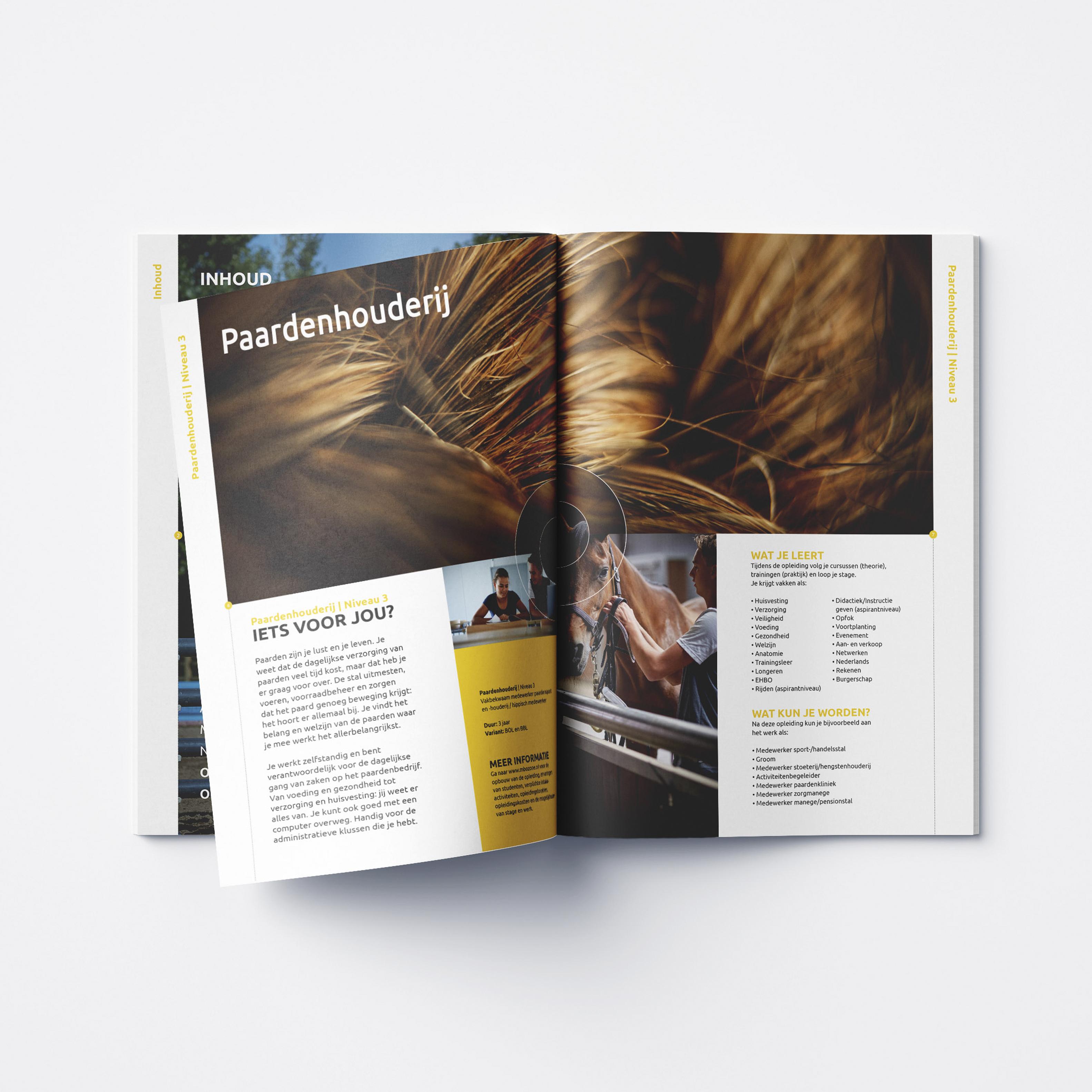 Binnenkant brochure opleiding paardenhouderij zonecollege